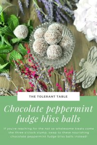 Chocolate Peppermint Fudge Bliss Balls Pinterest 2